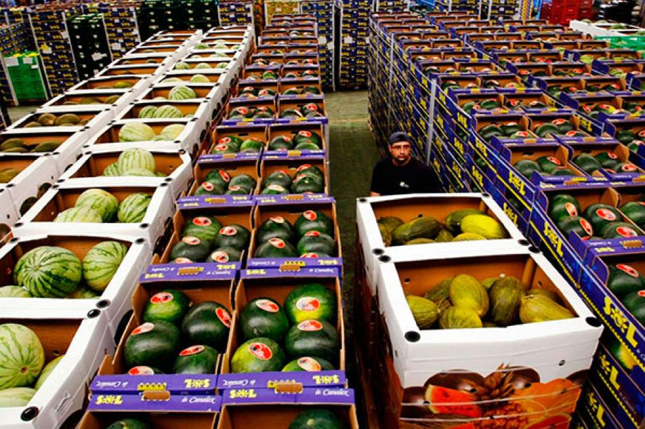 Регистраторы температуры для фруктов